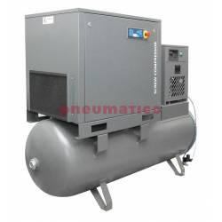 Kompresor śrubowy Walter na zbiorniku 500L z osuszaczem i dwoma filtrami (1 i 0,01 mikrona) 5,5/500 P COMBO